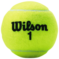 Wilson Championship Extra Duty Tennis Balls - Yellow / Black