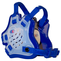 Cliff Keen F5 Tornado Headgear - Boys' Grade School - Clear / Blue