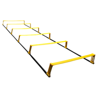 SKLZ Elevation Ladder