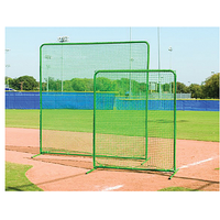 Diamond Team Fungo Protective Screen