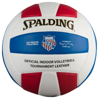 Spalding AAU Indoor TF-VB5 Leather Volleyball