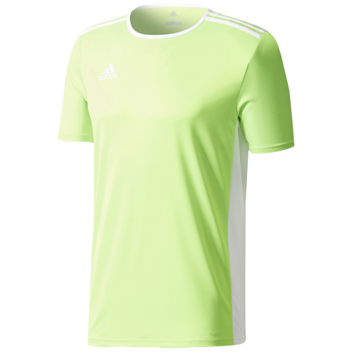 adidas Team Entrada 18 S/S Jersey - Men's - Soccer - Clothing - Solar Green/ White