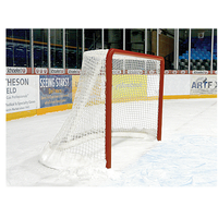 Bison Competition Ice Hockey Goal